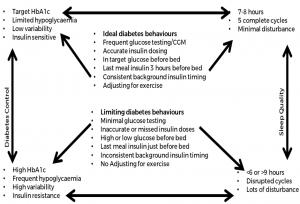 Sleep Diabetes Factors